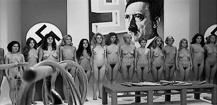 Frequently dubbed 'Nazi-porn', the cycle of Nazi sexploitation films ...